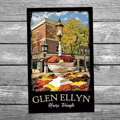 Downtown Glen Ellyn Horse Trough Postcard