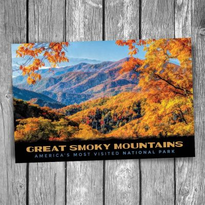Fall Foliage Smoky Mountain National Park Postcard