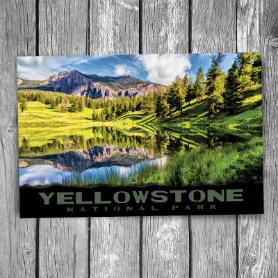 Yellowstone National Park Trout Lake Postcard