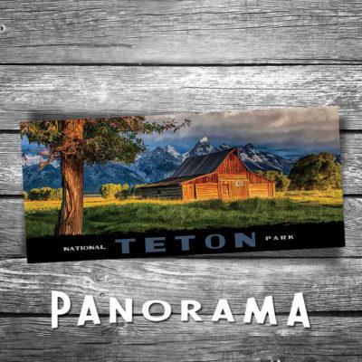 Grand Teton Panorama Postcard