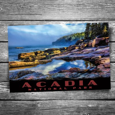 Acadia National Park Otter Cliffs Postcard