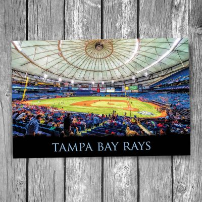 Tampa Bay Rays Tropicana Field Ballpark Postcard