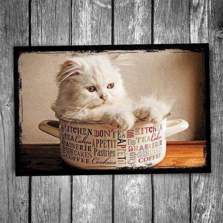 Soup Bowl Cat Postcard