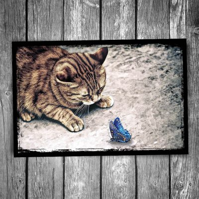 Hello Mr Butterfly Cat Postcard