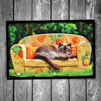 Cat on Couch Postcard