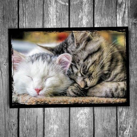 Snuggle Buddies Cat Postcard