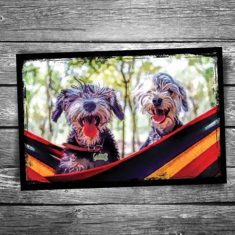 Dogs in Hammock Postcard