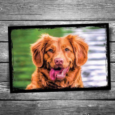 Smiley Dog Postcard
