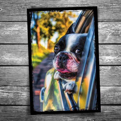 Car Window Dog Postcard