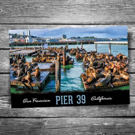 San Francisco Pier 39 Postcard