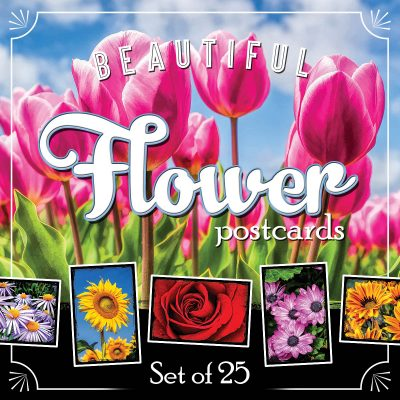 Flower Postcards | Set of 25