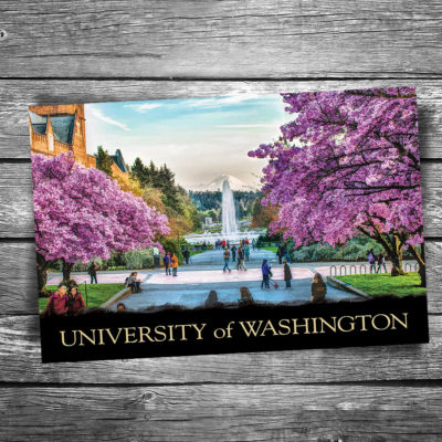 University of Washington Postcard