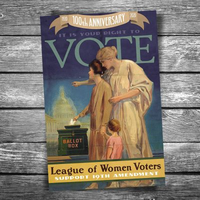 Women Vote 19th Amendment Postcard