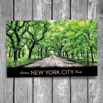 Central Park Mall New York City Postcard