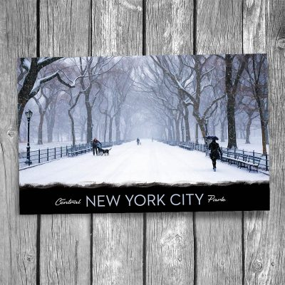 Central Park Mall in Snow New York City Postcard