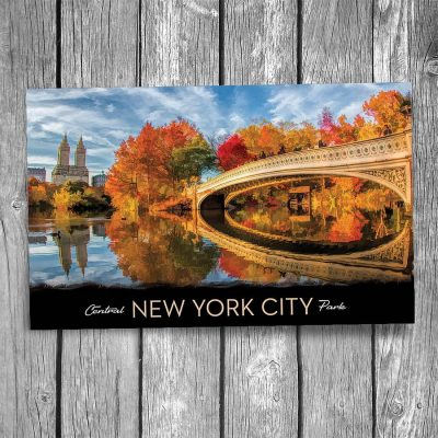 Central Park Bow Bridge New York City Postcard