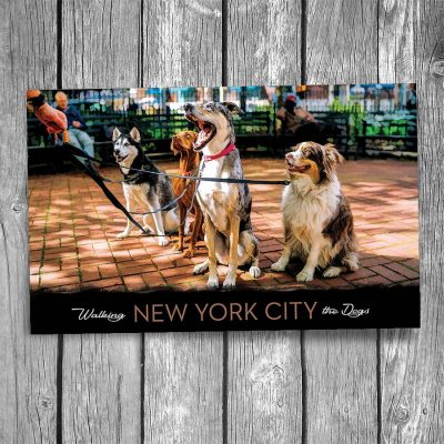 New York City Dog Walking Postcard