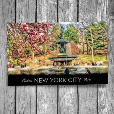 Bethesda Fountain Blossoms Central Park New York City Postcard